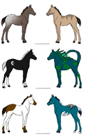 Foal Adoptables by zepIyn