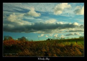 Windy Sky by Sagittor