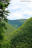 Pine Creek Gorge by GlassHouse-1