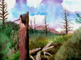 Watercolor: The Cycle by ShoulderDemon