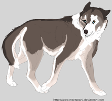 30 point Canine Adopt closed by lighteningfox