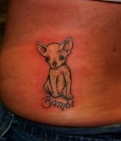 chihuahua by flyingants