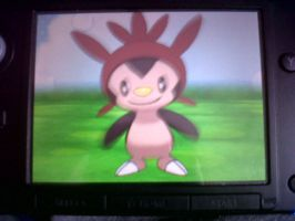 Shiny Chespin by Jonicthedgehog