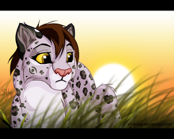 Request: Ketty Whitepaw for Fur-kotka by ShimiArt