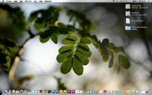 Desktop May 2008 by Qugeist