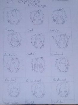 12 expressions challenge #1 by ChickenSabertooth1