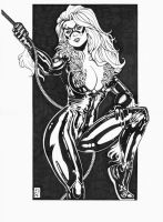 Pin-up 2: Blackcat by RamArtwork