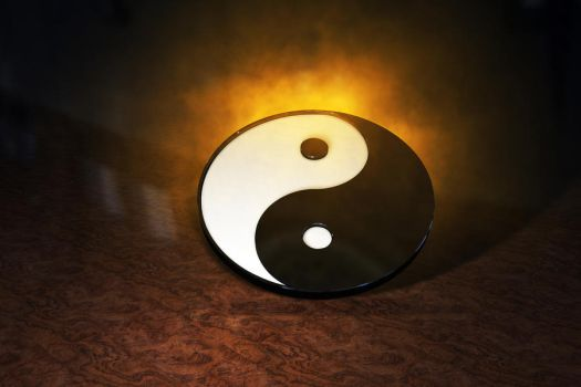 Yin and Yang by fission1