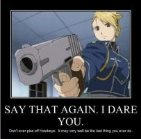 NEVER piss off Riza Hawkeye by crewkid52