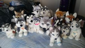 Plushies I brought out of storage! by Vesperwolfy87