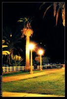 I'll Wait By a Palm Tree by alucier