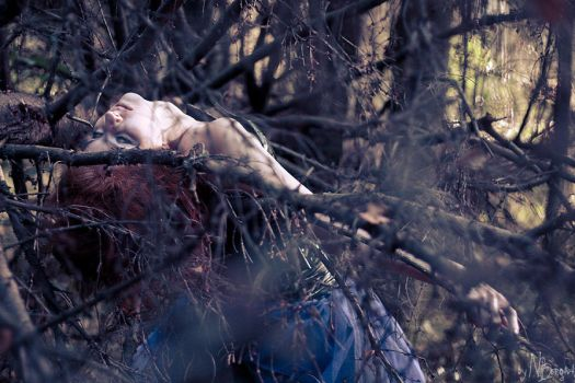 In the branches that blow by Somb-ra