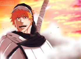 Bleach 581 - I came to help you [Coloring] by trinuma020