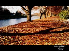 Another path by niwaj