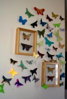 Butterfly Wall 2 by Dreams-Made-Flesh
