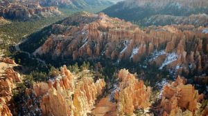 Scene, Bryce Canyon National Park, Utah by PamplemousseCeil