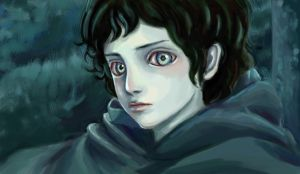 Mr. Frodo by rosita