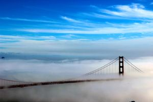 Fog City by DivergentFOUNDRY