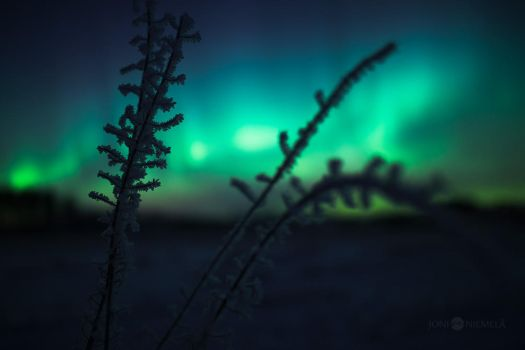 Frost And Auroras by JoniNiemela