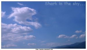 Shark in the Sky.. by montex