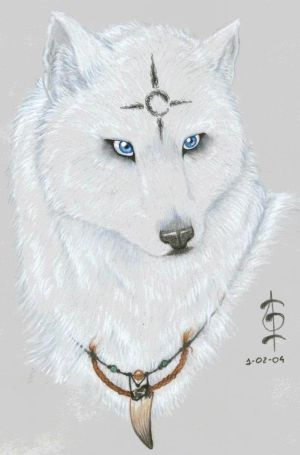 Mild Net Blog's: white anime wolf with blue eyes