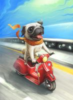 Riding On A Beautiful Day by t-rob