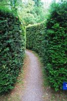 Narrow Pathway.. by Alz-Stock-and-Art