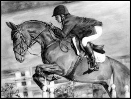 Eventing Collection: Show Jumping by Define-X
