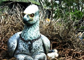Do the Hippogriff by HHNDoll