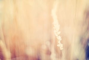Movement by solefield