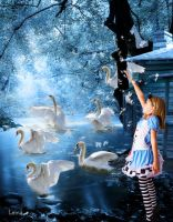 6 brothers swans. Tale of Grimm by Leina1
