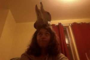 My New Cow Skull Balanced on my Head by Drunkan
