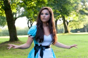 Alice in Wonderland 2 by fancydressqueen