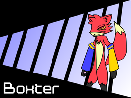 Boxter by JaRoDBlUe