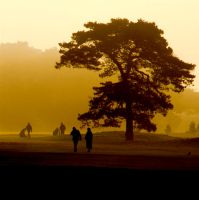 walkers on the links by awjay