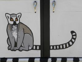 Ring Tailed Lemur on Para-Transit Van by silvercrossfox