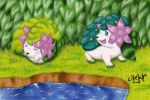 Shaymin by RAWN89