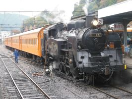 C11.227 with Orange Coaches in Senzu by rlkitterman