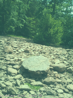 Stepping Stone! by cryas