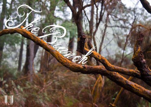 the Branch by slozo