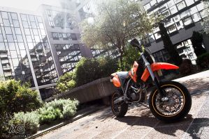 KTM 660 by alexisgoure