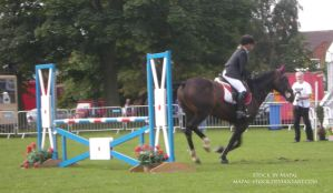 British Show Jumping 43 by mapal-stock