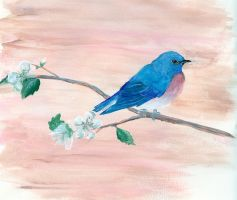 SPRING: Bluebird by HippieLlama