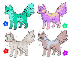 :Canine Adopts: [OPEN] by senpai-adopts