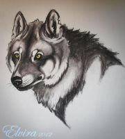 Wolf prisma pencils. by WolfHowl10