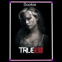 Sookie From True Blood Fan Art by Twilight5694