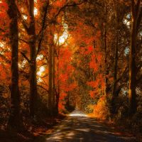 gate of fire by ildiko-neer