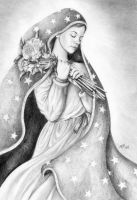 Lady of Guadalupe by mhr79