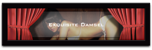 .: Exquisite Damsel :. by drudragon