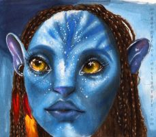 Avatar (markers) by meganparkes